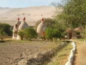 Centro de Sobrevivir en el Desierto